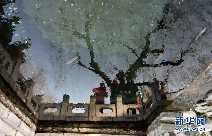 (环境)(5)济南:泉水叮咚迎新春