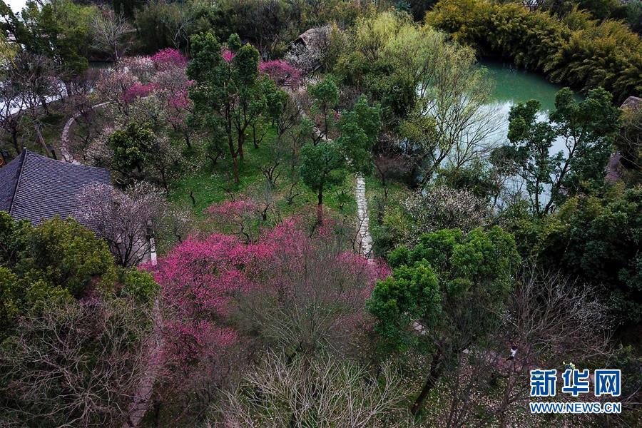 (美丽中国)(3)杭州西溪湿地:曲水寻梅 美不胜收