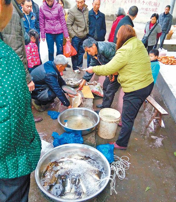 禁渔期捕鱼 鱼贩称给水产站交了钱