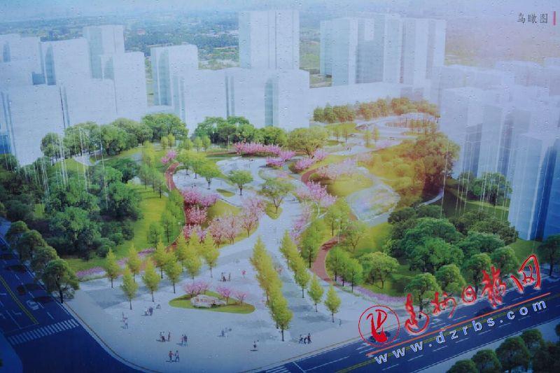 2.1万平方米的西外紫荆花公园初具雏形